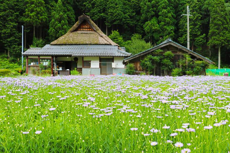 京都 山里 の 宿